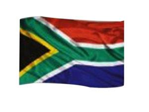 Big Sa Flag