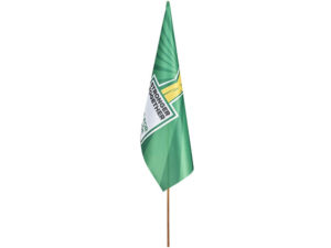 Champion Large Hand Flag 900 X 600Mm